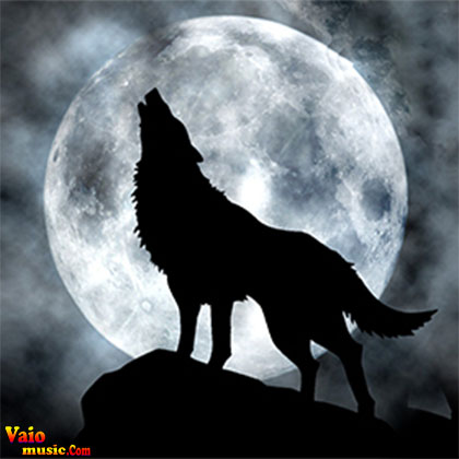 whether-human-or-humanoid-wolf-werewolf-there7